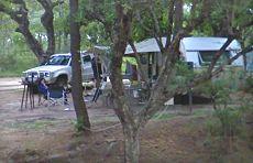 pretoriuskop camp kruger national park